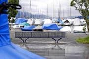 Entspannender Blick durch den Mastwald am Zuger Jachthafen auf den Zugersee – und in die Ferne. (Bild Werner Schelbert)