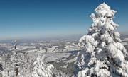 Der Wald erfüllt viele wichtige Aufgaben: Winteraufnahme vom Gnipen auf die Gemeinde Unterägeri. (Bild: PD/Direktion des Innern)