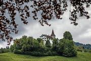 Das Schloss Schauensee oberhalb Kriens. (Bild Pius Amrein)