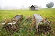 Die Betonblöcke in der Oberforen waren einst Fundament einer Seilbahnstütze. Die Werkbahn diente dem Transport abgebauten Torfes hinunter nach Walchwil. (Bild: Patrick Hürlimann / Neue ZZ)