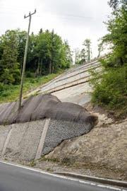 Im Bild ist die fertige Hergiswald Hangsicherung. Hier ein Blick von unten mit dem Reifenstapel im Vordergrund. (Bild: Roger Grütter/LZ (Kriens, 13.07.2017))