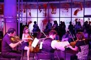 Kleine Nachtmusik: Das New Yorker Streichquartetts Mivos bei seinem Auftritt am Freitag im Bourbaki, Luzern. (Bild: LF/Stefan Deuber)