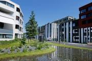 Das neu bebaute Areal der Suurstoffi in Rotzkreuz trägt zur erfolgreichen Bilanz 2013 bei. (Bild: Stefan Kaiser / Neue ZZ (Archiv))