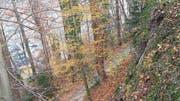 Die Felswand über dem Tribschenhornweg weist Verwitterungen auf und wird darum teilweise abgetragen. (Bild: PD/Stadt Luzern)