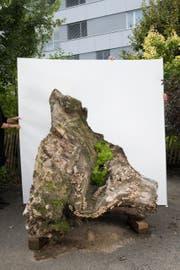 Dieser hölzerne «Seelöwe» wird Teil des Kunstprojektes auf dem Stanser Dorfplatz sein. Die komplette Installation wird erst kurz vor den Stanser Musiktagen aufgebaut. (Bild: PD)