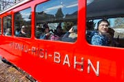 Die Rigi-Bahnen. (Bild: Dominik Wunderli (Neue LZ))