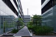 Die Zuger Unternehmen schauen positiv in die Zukunft (Symbolbild Neue ZZ).