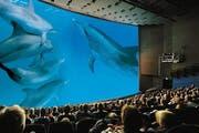 Impression aus dem Saal des zurzeit des Films «Delphine» noch Imax genannten Kinos. (Bild Photopress)