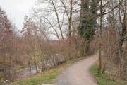 Unter anderem im Bereich «im Jöchler» bei den Schrebergärten in Baar soll die Lorze aufgewertet werden. (Bild: Maria Schmid (20. März 2018))