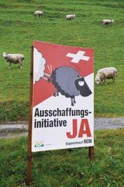 Abstimmungsplakat der SVP. (Bild: Urs Bucher (Sitterdorf, 12. November 2010))