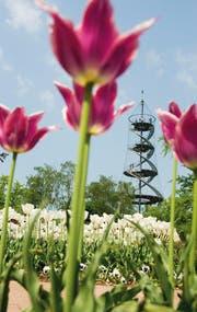 Mitten im Killesbergpark steht der aus zwei Wendeltreppen bestehende Killesbergturm. Herrlich luftig und aussichtsreich! (Bild: Stuttgart Marketing GmbH)