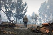 Ein Mann läuft im portugiesischen Valongo durch den vom Feuer zerstörten Wald. Der Waldbrand kostete im Juni elf Menschen das Leben. (Bild: Antonio Cotrim/EPA (19. Juni 2017))
