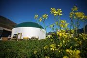 Ein solches Silo könnte dereinst auch in Richenthal stehen. Dort ist eine Biogasanlage geplant. Im Bild die Biogasanlage Agro Energie in Schwyz. (Bild: Archiv/Neue LZ)
