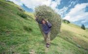 Die Luzerner Bergbauernbevölkerung lebt auf rund 1600 Landwirtschaftsbetrieben. (Symbolbild: Urs Flüeler/Keystone)