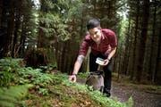 Mario Garcia pflückt während der Wanderung im Wald beim Holderchäppeli Klee für ein Picknick der gehobenen Art. (Bild Corinne Glanzmann)