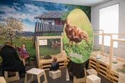 So sieht die neue Oster-Ausstellung im Natur-Museum aus. (Bild: Urs Flüeler/Keystone (Luzern, 28. März 2018))
