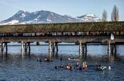 Rund 30 Personen schwimmen 2013 am traditionellen Silvesterschwimmen der Schweizerischen Lebensrettungs-Gesellschaft (SLRG) in der Reuss. (Bild: Keystone / Alexandra Wey)