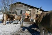 Vinzenz Arnold räumt auf seinem Hof in Roggliswil im Auslauf der Kühe den Mist in eine Schubkarre. Er hat Freude an siner Arbeit, fürchtet aber um seine Zukunft. (Bild: Philipp Schmidli / Neue LZ)