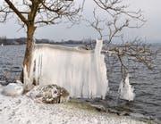 Die Auswirkungen der aktuellen Kältewelle zeigen sich am Seeufer in Buonas besonders eindrücklich: Eine faszinierende Eisskulptur ist hier entstanden.Leserbild: Corinne Büchler, Buonas (27. Februar 2018)
