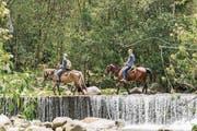 Familie Gromann mag es in den Ferien auch gerne mal abenteuerlich und hoch zu Ross. (Bild: patotra.com)