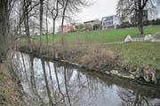 Im Bereich Hofbach soll die Sure für 2,6 Millionen Franken revitalisiert werden. (Bild: Boris Bürgisser (Oberkirch, 28. November 2017))