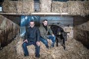 Peter Winter und Martin Nestmann vom Restaurant Schiff mit Stier Erich im Chrummbaum-Stall. (Bild: Nadia Schärli (Hellbühl, 27. Februar 2018))