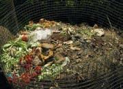 Speisereste können durch Mikroorganismen abgebaut werden. Sie müssen jedoch fachgerecht in den Kompost eingebracht werden. (Bild: Imago)