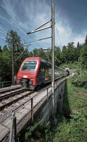 Eine S-Bahn auf dem einspurigen Abschnitt bei Sihlbrugg in Fahrtrichtung Zug. (Bild: Pius Amrein (13. Juni 2017))
