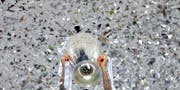 Sergio Ramos, der Captain von Real Madrid, stemmt die begehrteste Trophäe im Klubfussball: Die Champions League ist für die Uefa eine Goldgrube. (Bild: AP/Manu Fernandez)