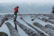 Harte Arbeit auf dem See: Damian Iten ordnet die Stämme. (Bild: Stefan Kaiser/Neue ZZ)