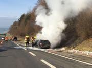 Das Fahrzeug geriet auf dem Pannenstreifen in Brand. (Bild: Luzerner Polizei)