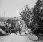 Früher war das Futtermanagement Knochenarbeit: Im Bild Bauern aus dem Emmental um 1935 (Bild: Staatsarchiv des Kantons Bern, FN Jost N 3058)