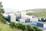 Die Sicht von der Amstutzstrasse nach Luzern - im Vordergrund die Bebauung «Eichhof West» (Bild: Visualisierung PD)