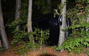 Die Lenkerin blieb beim Unfall unverletzt. (Bild: Luzerner Polizei)