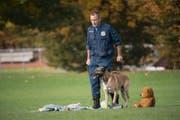 Das Siegerteam der zugerischen Polizeihundeprüfung: Daniel Kamer mit Lennox von der Guldenburg. (Bild: Zuger Polizei)