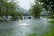 2013 trat die Reuss zwischen Luzern und Emmen über die Ufer. (Bild: Archiv / Neue LZ / Dominik Wunderli)