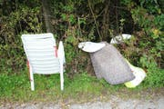Illegal am Waldrand entsorgte Stühle und Sitzkissen. (Bild: Archiv Neue LZ)