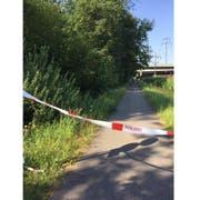 Die Tat ereignete sich 60 Meter vor der Brücke Reusseggstrasse: Hier ist die Frau vom Velo gerissen worden.
