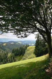 Zum Bundesinventar geschützter Landschaften gehört auch das Napfgebiet. (Bild Manuela Jans)