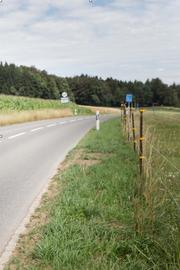 Die Kantonsstrasse, hier in Müswangen. (Bild: Manuela Jans-Koch/NLZ, 3. August 2016))