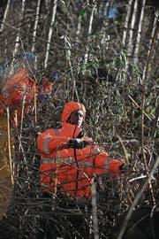 Asylbewerber bei einem Freiwilligeneinsatz. (Bild: Corinne Glanzmann (Giswil, 11. Dezember 2013))
