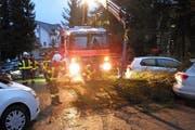 Die Stützpunktfeuerwehr Küssnacht musste an die Bahnhofstrasse in Küssnacht ausrücken, weil eine Tanne auf vier parkierte Autos stürzte. (Bild: Kapo Schwyz)