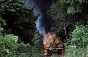 Im Bundesstaat Para illegal gefällte Bäume werden von den Behörden verbrannt. (Bild: Ueslei Marcelino/Reuters (Novo Progresso, 11. November 2016))