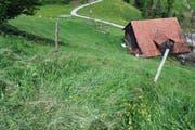 Diesen steilen Abhang ist der Bauer mit seiner Landwirtschaftsmaschine hinabgestürzt. Dabei wurde er schwer verletzt. (Bild: Luzerner Polizei)
