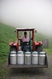 Milchbauern fürchten angesichts der tiefen Preise um ihre Existenz. (Bild: Keystone)