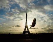 Eiffelturm wird eingesperrt (Bild: Daniel Ochoa de Olza/AP (13. November 2016))