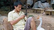 Der 20-jährige Moafu sieht im einfachen Leben als Imker und der Übernahme des Hofs seines Vaters keine Zukunft. (Bild: PD)