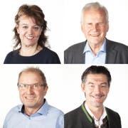 Sie können «Rüüdige Lozärner 2017» werden: Erika Burkhard, Max Plüss (o.r.), Walti Stadelmann (u.l.) und Patrick Widmer. (Bild: PD)