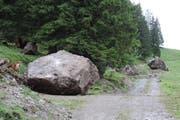 Tonnenschwere Felsbrocken donnerten ins Tal. (Bild: Kanton Schwyz)