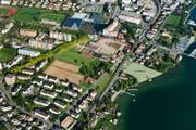 Mit der Oesch-Wiese (hellgrün eingefärbt) kann die Fläche des bestehenden Strandbades mehr als verdoppelt werden. (Bild: PD/Andreas Busslijger)